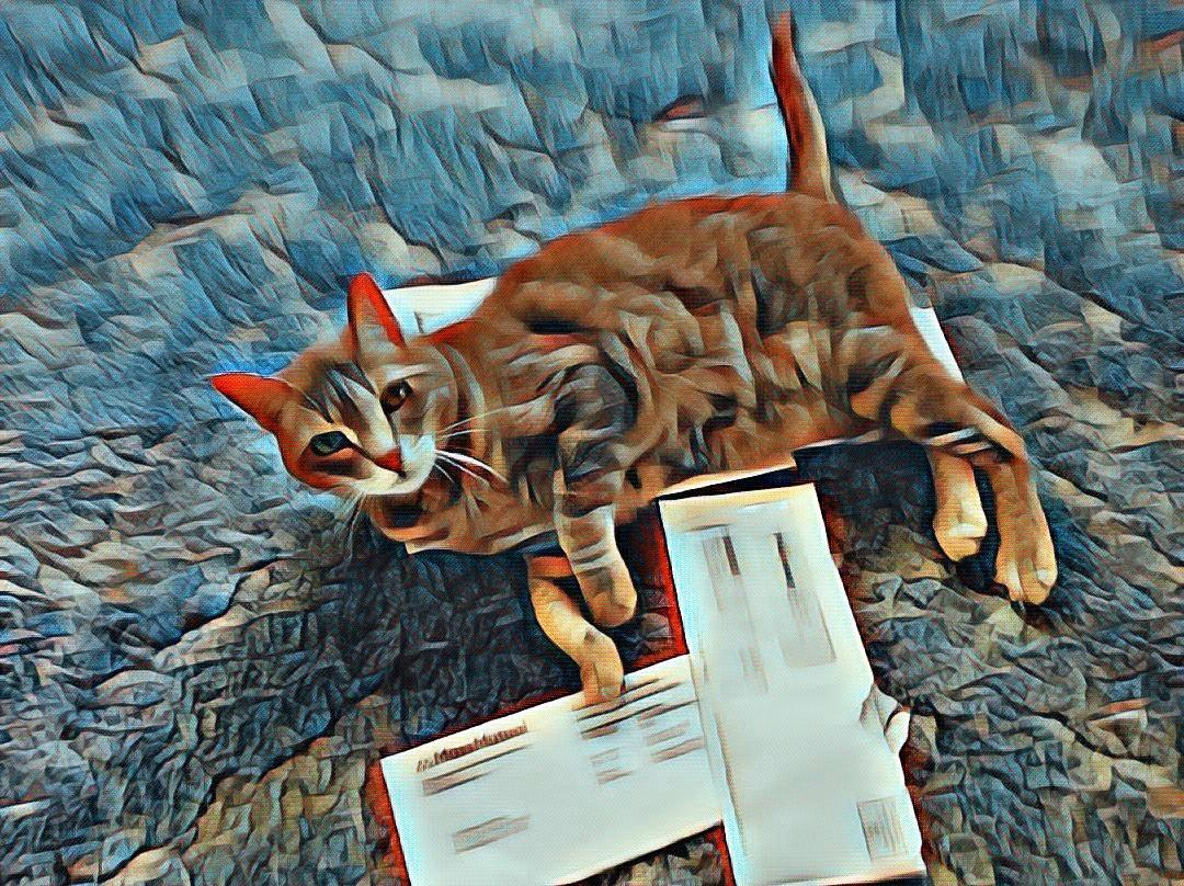 My Cat Reads My Mail ~ a short poem by Katrina Curtiss 4/30/2020