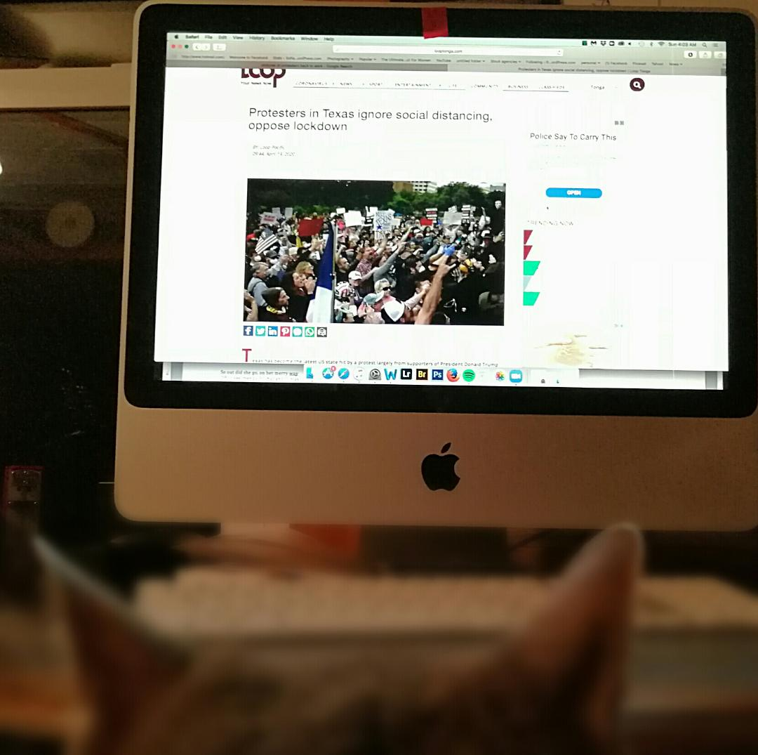 My Cat Is Pissed At The Protesters ~ a short poem by Katrina Curtiss 4/19/2020