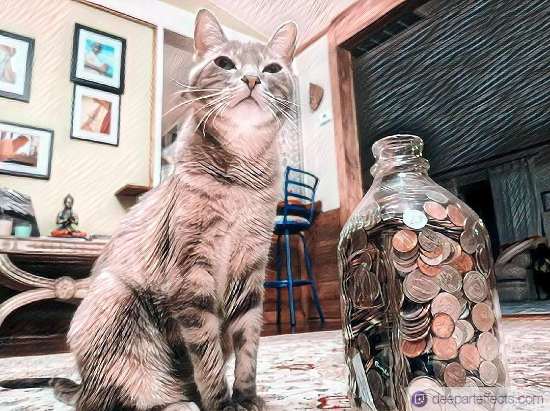 My Cat And Her Coins ~ a short poem by Katrina Curtiss 6/23/2020