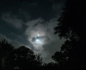 The Moon, The Earth And Me ~ a short poem by Katrina Curtiss 6/5/2020