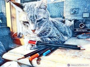 My Cat Gives Me A Drawing Lesson ~ by Katrina Curtiss 7/13/2020