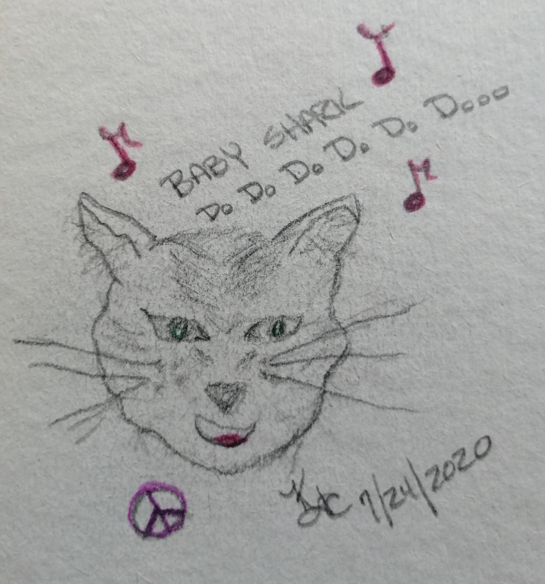 My Cat Sings The Baby Shark Song ~ a short poem by Katrina Curtiss 7/24/2020