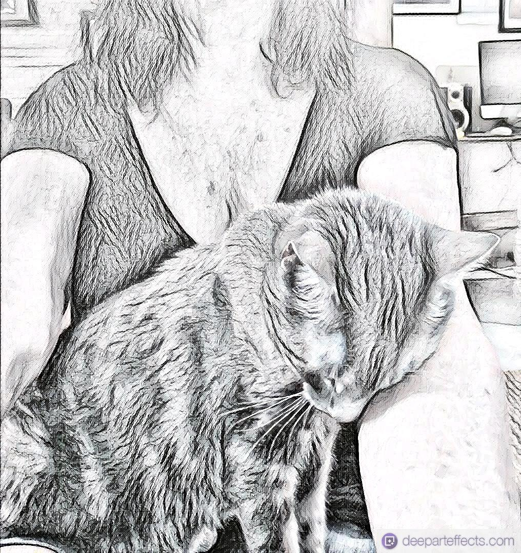 My Cat is Jealous of My Guitar ~ A Short Poem by Katrina Curtiss 9/5/2020