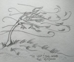The Leaf And The Wind©   ~ by Katrina Curtiss  9/17/2020