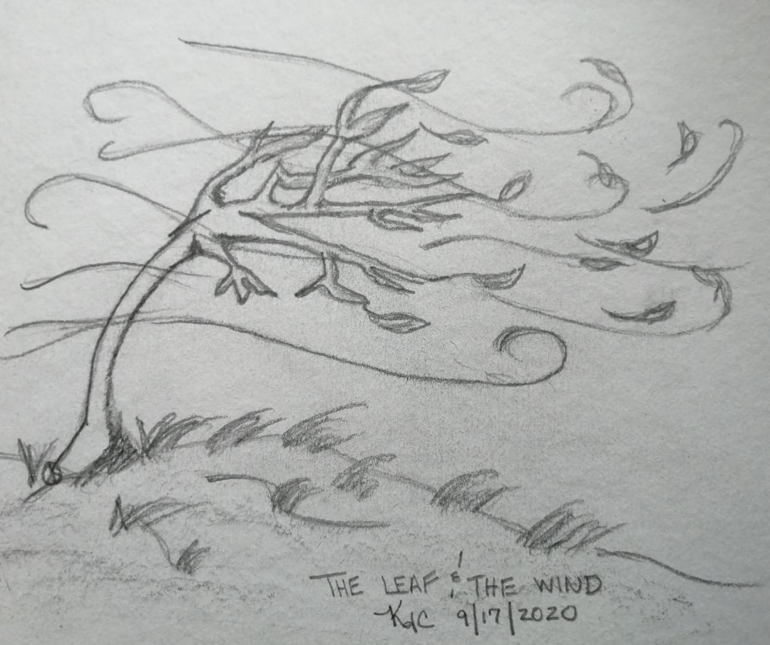 The Leaf And The Wind©~ by Katrina Curtiss 9/17/2020
