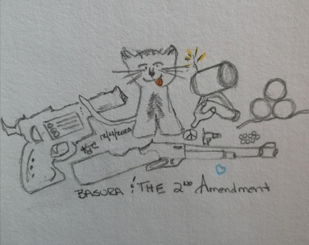 My Cat And The 2nd Amendment ~ Katrina Curtiss 11/1/2020