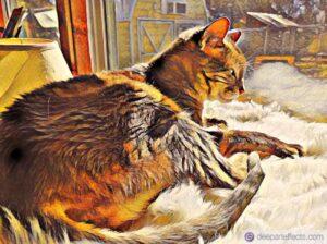 Basura Cat and I Were Having A Conversation…Katrina Curtiss 1/7/2021