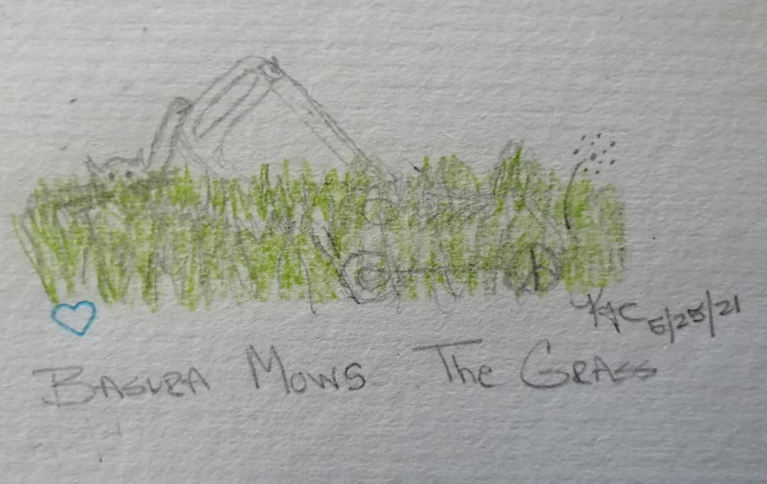 My Cat Tries To Mow The Grass ~ Katrina Curtiss 5/25/21