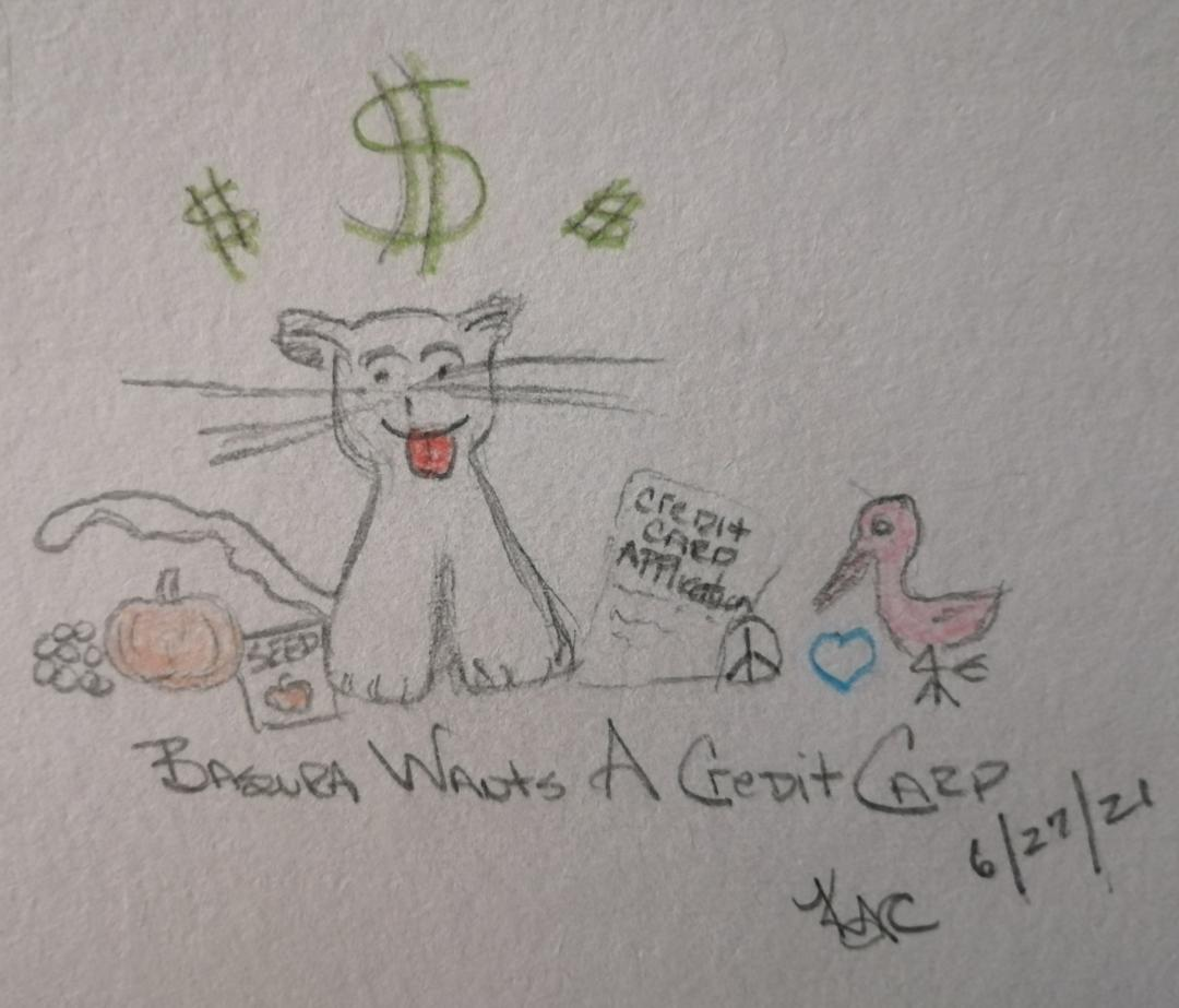 My Cat Wants A Credit Card ~ Katrina Curtiss 6/27/21
